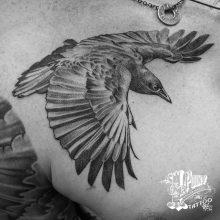 Vincent D. Samaniego Black and Grey Tattoo Artist